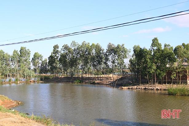 UBND tỉnh Hà Tĩnh chỉ đạo xử lý nghiêm sai phạm giao đất trái thẩm quyền