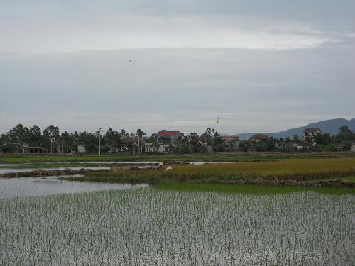 UBND huyện Can Lộc ban hành Thông báo Kết luận giải quyết đơn tố cáo của công dân ở xã Xuân Lộc