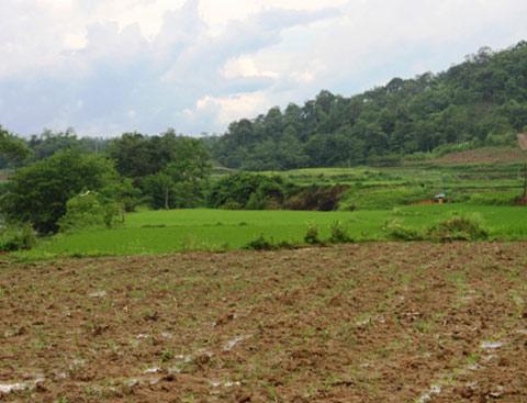 Chủ tịch UBND huyện Vũ Quang ban hành Quyết định giải quyết khiếu nại của bà Hoàng Thị Thủy ở xóm Tùng Quang, xã Hương Quang, huyện Vũ Quang