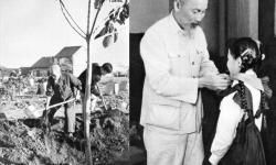 """Đầu xuân, nghĩ về tư tưởng """"trồng người"""" của Chủ tịch Hồ Chí Minh"""